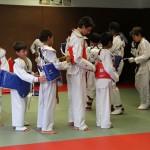 taekwondo-ados-plastron