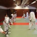 taekwondo-ados-travail