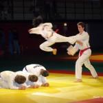 taekwondo-ados