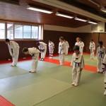 taekwondo-ados-salutations